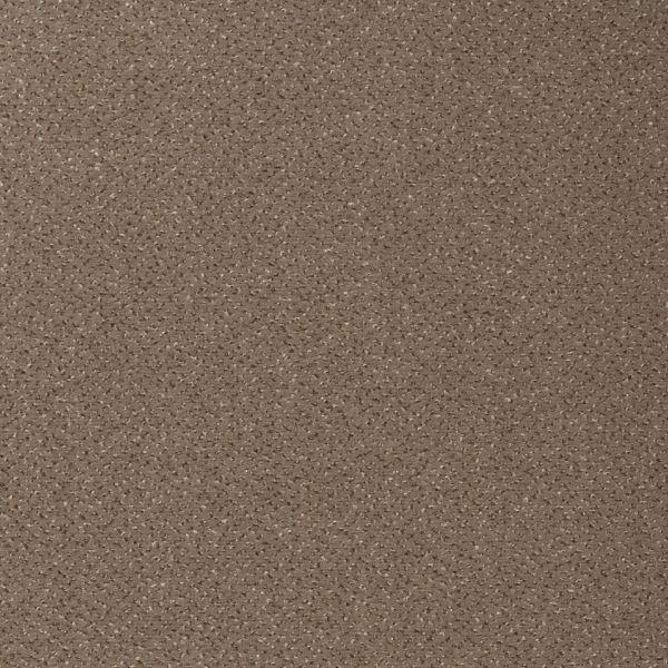 Vorwerk Teppichboden Passion 1006 Design 7F92