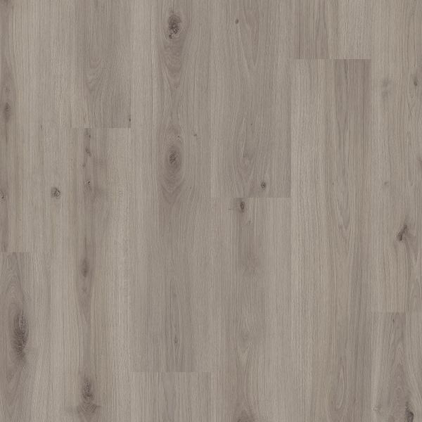 Eiche Maine - Pergo Mandal Laminat zum Klicken 8 mm