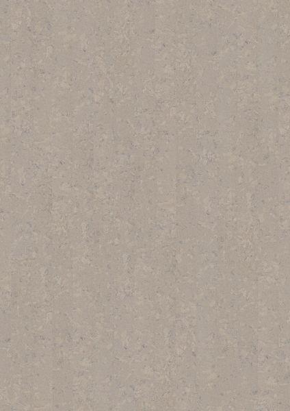 Shell Jasmin - Amorim Cork Wise Kork zum Klicken 7 mm