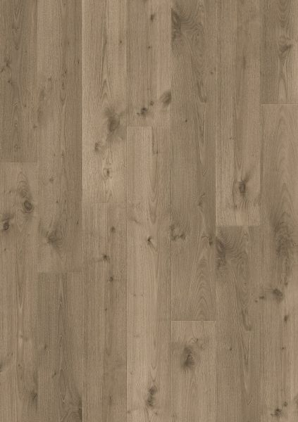 Meadow Eiche - Pergo Sensation Laminat zum Klicken 9 mm