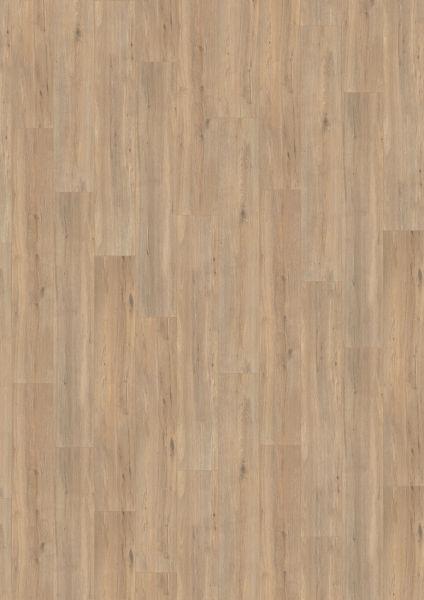 Wild Oak Brown - 500 M / L / XXL Laminat zum Klicken 8 mm