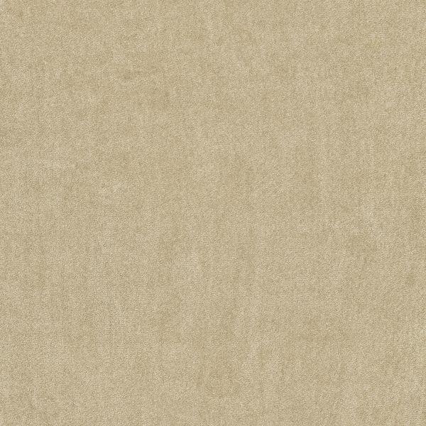 Vorwerk Teppichboden Superior 1064 Design 8K02
