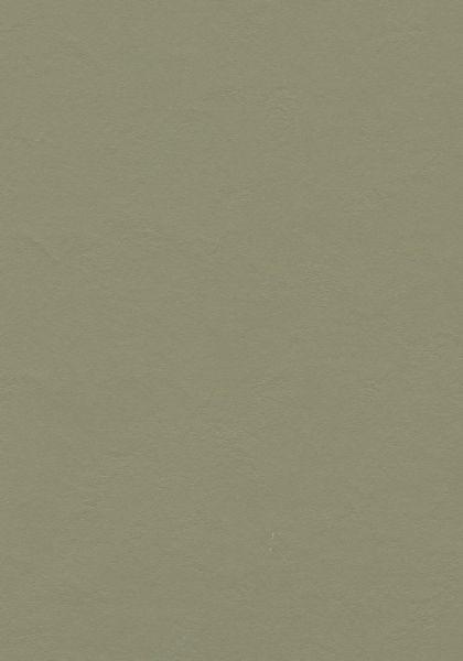 Roesmary Green - Forbo Marmoleum zum Klicken 9,8 mm