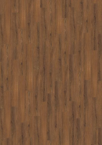 Chocolate Brown Oak - Amorim Wood Wise SRT Kork zum Klicken 7,3 mm