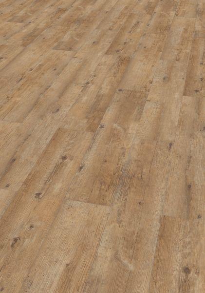 Pinie Grau - JAVA Mineral-Designboden zum Klicken 7,5 mm