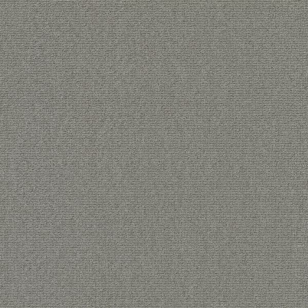 Vorwerk Teppichboden Essential 1008 Design 5V78