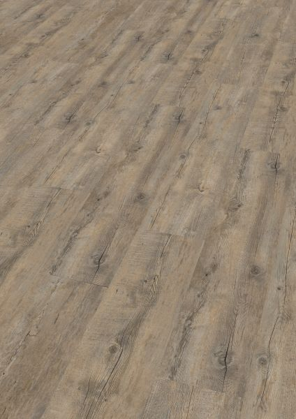 Embrace Oak Grey - Wineo 400 Wood Vinyl zum Klicken 4,5 mm