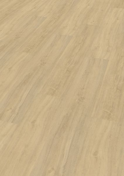 Kindness Oak Pure - Wineo 400 Wood XL Vinyl zum Klicken 9 mm