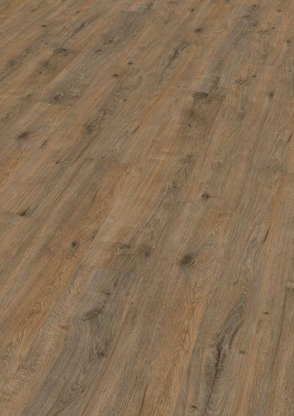 Valley Oak Soil - Wineo 1000 Wood Bioboden zum Kleben 2,2 mm