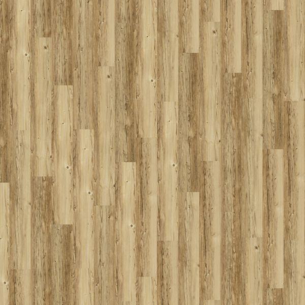 Sprucewood - Amorim Wood Wise SRT Kork zum Klicken 7,3 mm