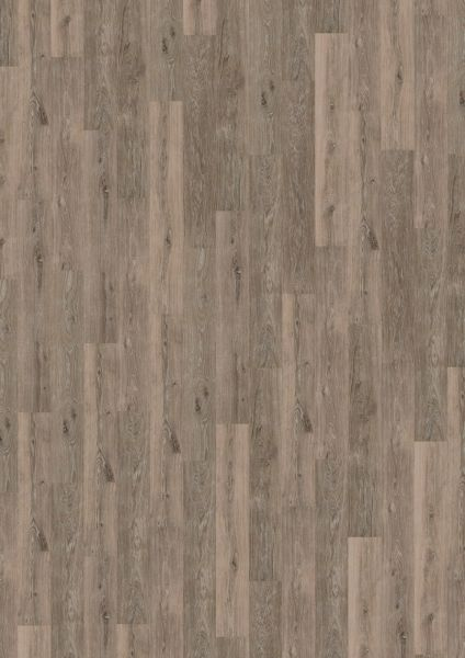 Taupe Washed Oak - Amorim Wood Wise Kork zum Klicken 7 mm