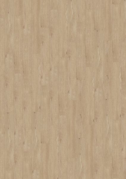 Natural Light Oak - Amorim Wood Wise SRT Kork zum Klicken 7,3 mm