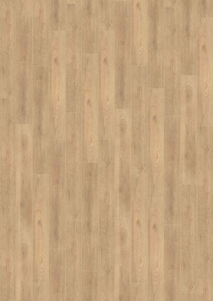 Balanced Oak Beige - 500 M / L / XXL Laminat zum Klicken 8 mm