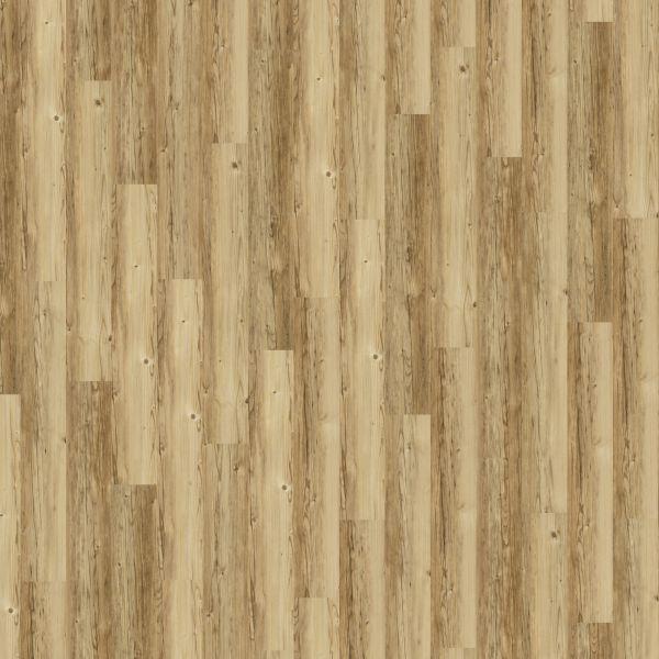 Sprucewood - Amorim/Wicanders Designboden zum Klicken 10,5 mm