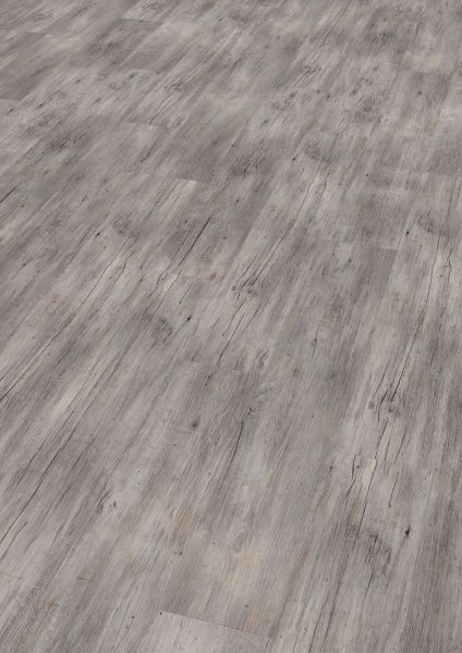 Riga Vibrant Pine - Wineo 800 Wood Vinyl zum Klicken 5 mm