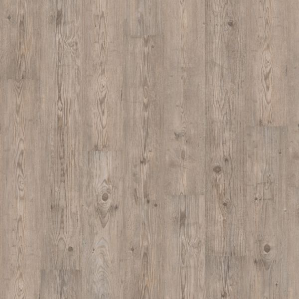 Ascona Pine Grey - Wineo 300 Laminat zum Klicken 7 mm