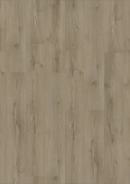 Galloway Oak Medium Beige - Ultimate 30 Rigid-Vinyl zum Klicken 5 mm