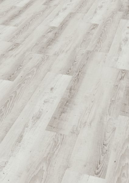 Moonlight Pine Pale - Wineo 400 Wood Vinyl zum Klicken 4,5 mm