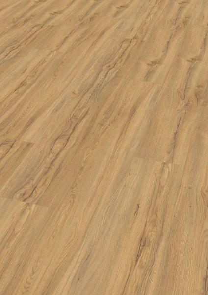 Canyon Oak - Wineo 1000 Wood XXL Bioboden zum Klicken 9 mm