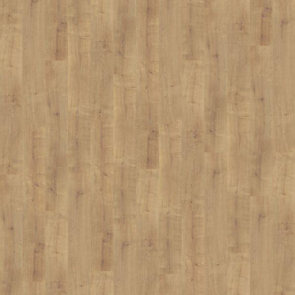 Sun Oak - Wineo 300 Laminat zum Klicken 9 mm
