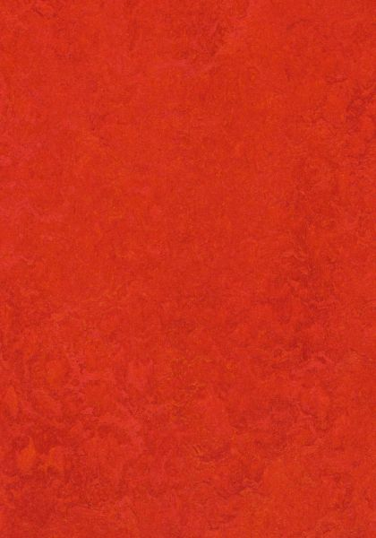 Scarlet - Forbo Marmoleum zum Klicken 9,8 mm