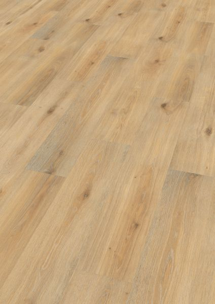Island Oak Honey- Wineo 1000 Wood Bioboden zum Klicken 5 mm