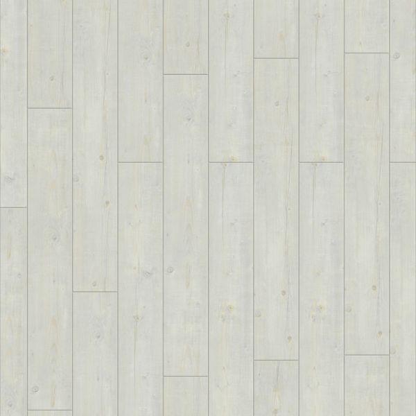 Washed Pine Snow - Starfloor Click 30 Vinyl zum Klicken 4 mm