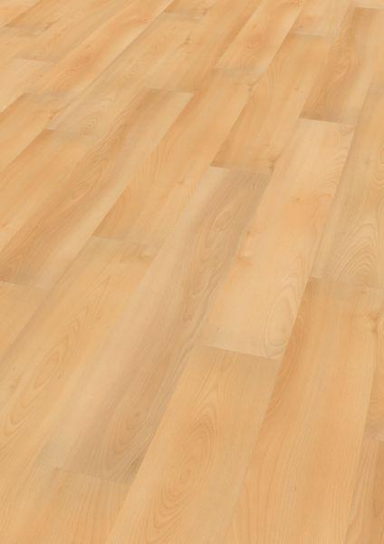 Summer Beech- Wineo 1000 Wood Bioboden zum Klicken 5 mm
