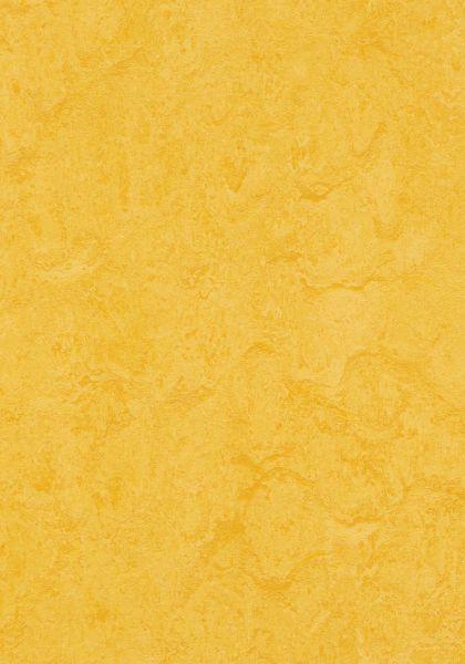Lemon Zest - Forbo Marmoleum zum Klicken 9,8 mm