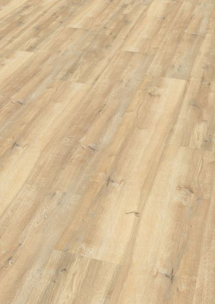 Fashion Oak Cream - Wineo 1500 Wood XL Bioboden zum Kleben 2,5 mm
