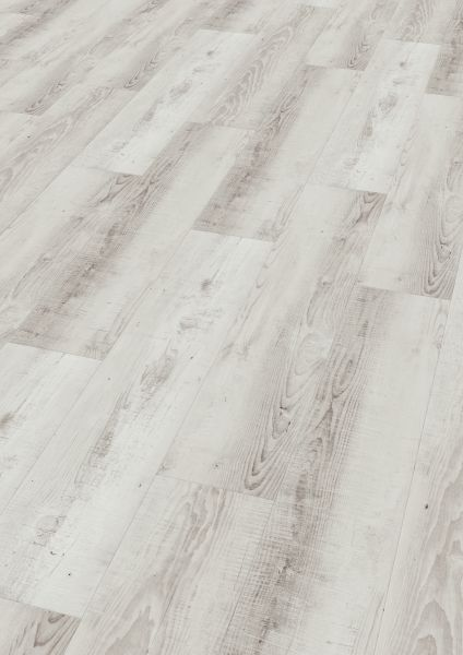 Moonlight Pine Pale - Wineo 400 Wood Vinyl zum Kleben 2 mm