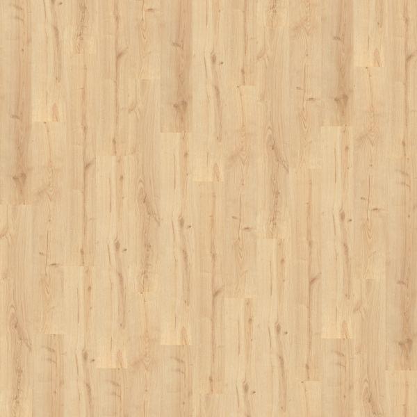 California Oak - Wineo 300 Laminat zum Klicken 9 mm