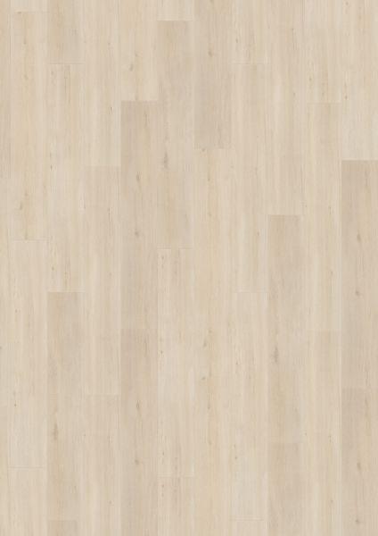 Wild Oak White - 500 M / L / XXL Laminat zum Klicken 8 mm