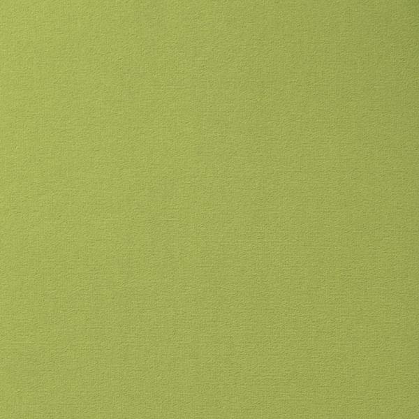 Vorwerk Teppichboden Passion 1000 Design 4D61