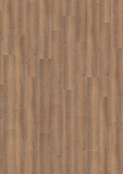 Smooth Oak Darkbrown - 500 M / L / XXL Laminat zum Klicken 8 mm